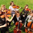 Stock Photo: Group of violinists play standing on grass