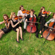 Six violinists sit semicircle on  grass and play - Stock Photo