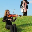 Violinist and violoncellist play on grass against sky - Zdjęcie stockowe