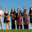 Six violinists stand on  grass against sky - Стоковая фотография
