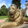 Statue of lion in  Sochi  arboretum — Stock Photo