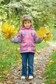 Little girl collect maple leafs In park in autumn — Stock Photo