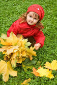Little girl collect maple leafs in the autumn in park — Stock Photo