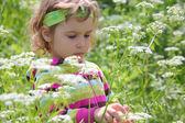 Little girl on glade among flowers — Stock Photo