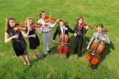 Six violinists stand semicircle on grass and play — Stock Photo