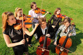 Group of violinists play standing on grass — Stock Photo