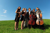 Six violinists stand on grass against sky — Stock Photo