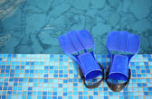Flippers on the brink of pool — Stock Photo