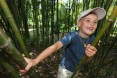 Boy in bamboo grove in Sochi arboretum — Stock Photo