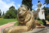 Statue of lion in Sochi arboretum — Stock Photo
