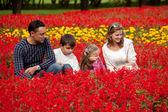 Familj på fyra tittar åt sidan i blommande park — Stockfoto