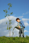 Boy plants the tree — Stockfoto