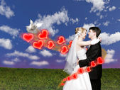 Wedding couple with dove on meadow collage — Stock Photo