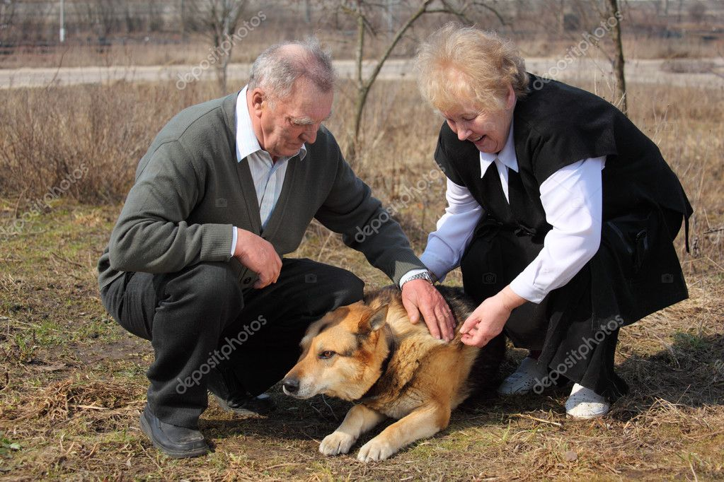 Elderly pair caresses a dog — Stock Photo #7424002