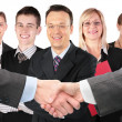 Stock Photo: Shaking hands with wrists and five business group collage