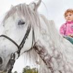 Little girl riding horse — Stock Photo