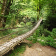 Stock Photo: Wooden suspension bridge in wood