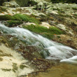 Mountain stream — Stock Photo #7430212