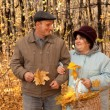 Old man and old woman in autumnal forest — Stock Photo #7430948