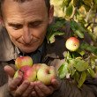 Stock Photo: Thoughtful middleaged mwith apples