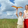 Young woman and boy plays kite on meadow — Stock Photo #7431173