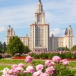 Stock Photo: Moscow State University of name of Lomonosov. Vertical for
