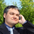 Businessman speaking by phone outdoor in summer - Stock Photo