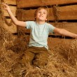 On pile of straw — Stock Photo