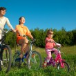 The father, mum and daughter go for a drive a sunny day on bicyc — Stock Photo