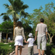 Family walking palm — Stock Photo