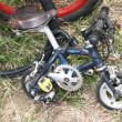 Small bike on the grass — Stock Photo