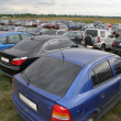 Stock Photo: Stand of automobiles on to meadow