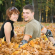 Young  couple sit in yellow leaves — Photo