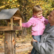 Grandfather with the granddaughter in the park in autumn - 图库照片