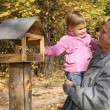 Grandfather with the granddaughter in the park in autumn - Stok fotoğraf