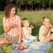 Family picnic — Stock Photo #7434405