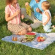 Family on picnic — Stock fotografie