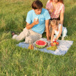Family picnic — Stock Photo #7434445