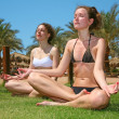 Tropical yoga girls — Stock Photo