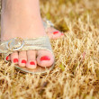 Female foot on the grass - Stock Photo
