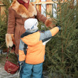 Mother and child choose fir for xmas — Stock Photo #7439611