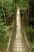 Wooden suspension bridge in wood — Stock Photo
