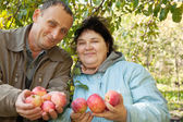 Middleaged man and woman with apples — Stock Photo