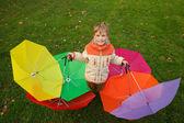 Paraplyer i höst park — Stockfoto