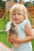 Little girl plays with Guinea pig on meadow — Stock Photo