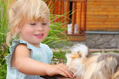 Little girl feeds Guinea pig in courtyard near house — Stock Photo