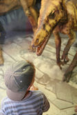 Boy and dinosaur in museum — Stock Photo