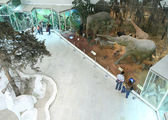 Bezoekers in het natuurlijke museum — Stockfoto