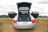 Musical automobile on to the meadow — Stock Photo