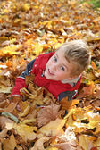Child in maple leaves — Stock Photo
